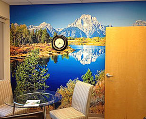 Vinyl Wall Graphics Los Angeles