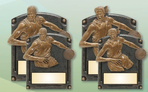 Laser Engraved Little League Award Plaques Los Angeles