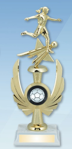 Laser Engraved Soccer Trophies Los Angeles